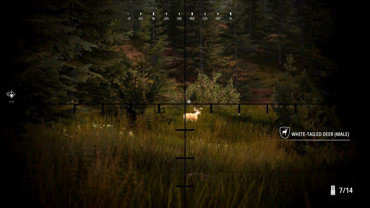 模拟狩猎2(Hunting Simulator 2)插图4
